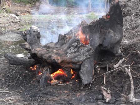 die stump die