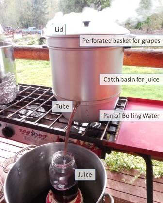 steamer juicer1
